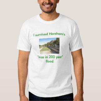 Barnes Blvd, I survived, Horsham's once i... Tee Shirt
