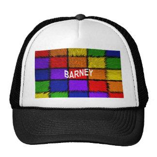 BARNEY (male names ) Trucker Hat