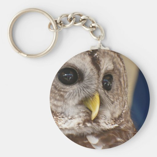 Barney the Owl Basic Round Button Keychain