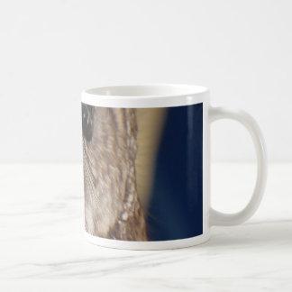 Barney the Owl Coffee Mug