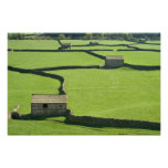 Barns and dry stone walls photograph