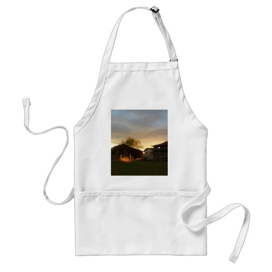 Barns in the Afternoon Sunlight Adult Apron