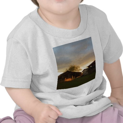 Barns in the Afternoon Sunlight Tee Shirts