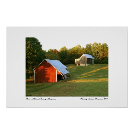 Barns Of Calvert County, Maryland Poster