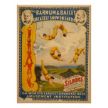 Barnum & Bailey Circus - Circa 1900 Poster