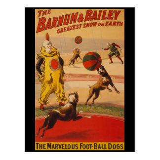 Barnum & Bailey Circus Foot-Ball Dogs Postcard