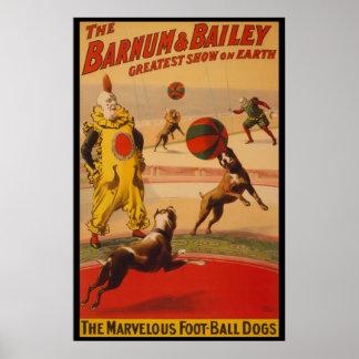 Barnum & Bailey Circus Foot-Ball Dogs Poster