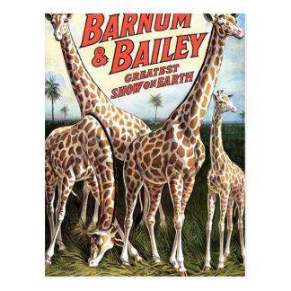 Barnum & Bailey Giraffes Retro Theater Postcards