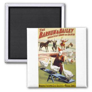 Barnum & Bailey - Wonderful Performing Geese Magnet