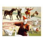 Barnum & Bailey - Wonderful Performing Geese Post Card