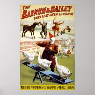 Barnum & Bailey - Wonderful Performing Geese Poster