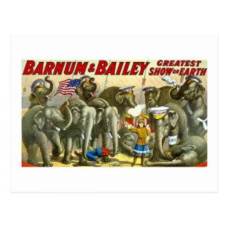 Barnum y Bailey - elefantes - anuncio del vintage Postal