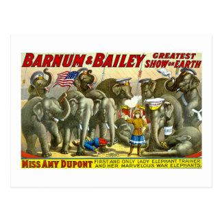 Barnum y Bailey - elefantes Tarjetas Postales