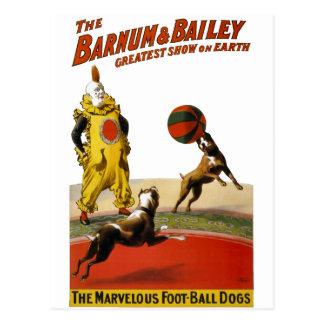 Barnum y Bailey: Perros del fútbol Postal