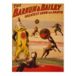 Barnum y Bailey - perros maravillosos del fútbol Postal