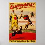 Barnum y circo de Bailey - circa 1900 Posters