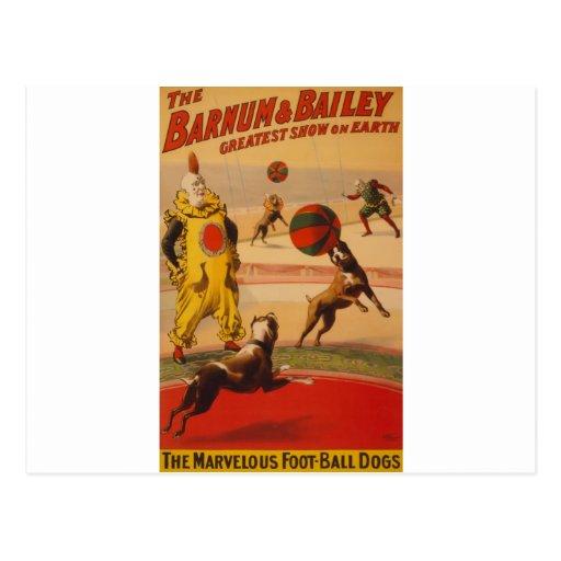 Barnum y perros maravillosos del fútbol de Bailey Tarjetas Postales