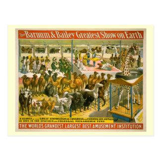 Barnum y poster del circo de Bailey Tarjetas Postales