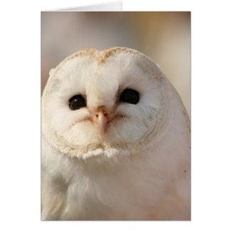Barny the Barn Owl Card