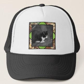 Barnyard Cat Cap