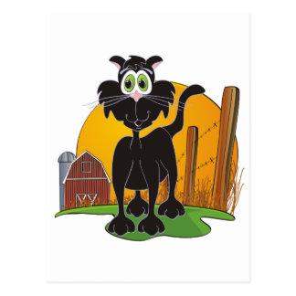 Barnyard Cat Postcard