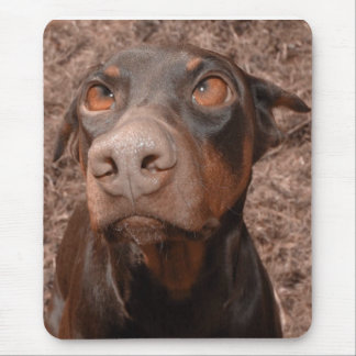 Baron ( Red and Rust ) Doberman Mouse Pad