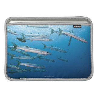 Barracuda de Blackfin Funda MacBook