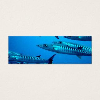barracuda dive deep sea ocean water tropical wave mini business card