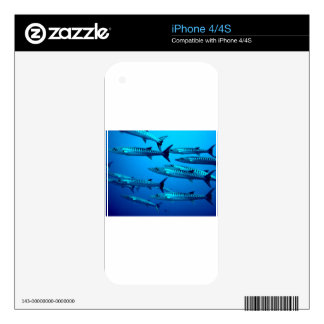 barracuda dive deep sea ocean water tropical wave skins for the iPhone 4