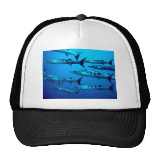 barracuda dive deep sea ocean water tropical wave trucker hat