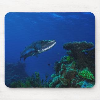 """Barracuda en la gran barrera de coral"" Mousepad Tapete De Raton"