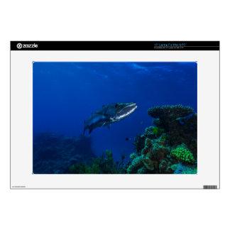 "Barracuda Great Barrier Reef Coral Sea 15"" Laptop Decal"