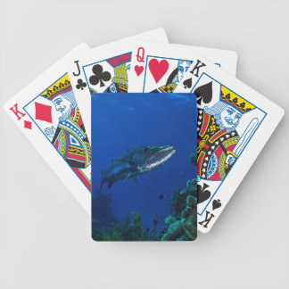 Barracuda Great Barrier Reef Coral Sea Bicycle Playing Cards