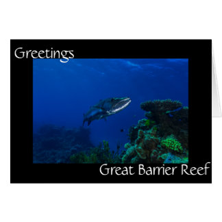 Barracuda Great Barrier Reef Coral Sea Card