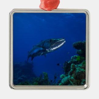 Barracuda Great Barrier Reef Coral Sea Metal Ornament