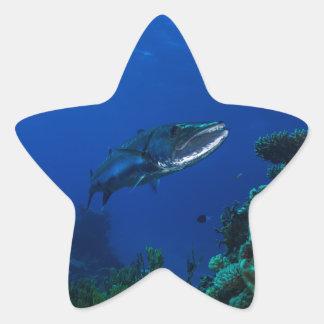 Barracuda Great Barrier Reef Coral Sea Star Sticker