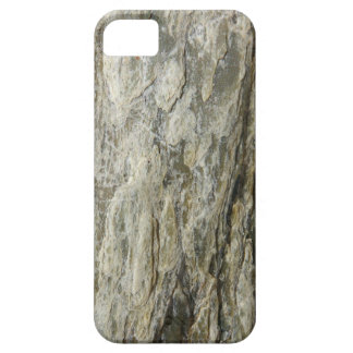 Barracuda - iPhone 5 - Barely There Case iPhone 5 Cases