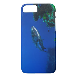 Barracuda on the Great Barrier Reef iPhone 8/7 Case