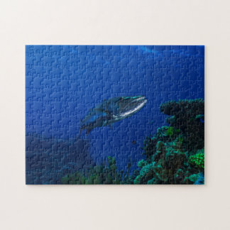 """""""Barracuda on the Great Barrier Reef"""" Puzzle"""