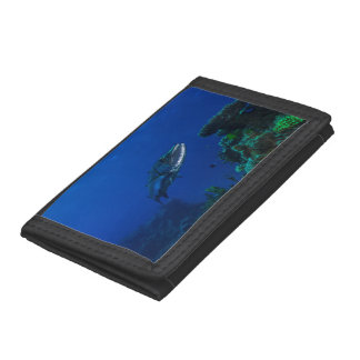 Barracuda on the Great Barrier Reef Tri-fold Wallet