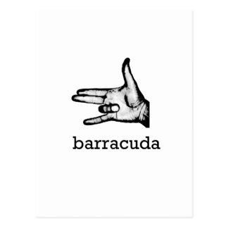 Barracuda Postcard