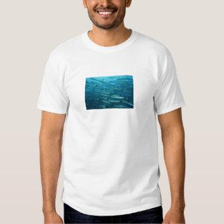 Barracuda Shoal Tee Shirt