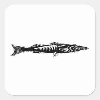Barracuda Stickers