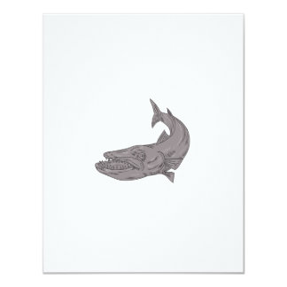 Barracuda Swimming Down Drawing Card