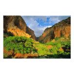 Barranco de Kolob en el barranco de Zion en el nac Fotos