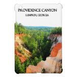 BARRANCO de PROVIDENCE - Lumpkin, Georgia iPad Mini Carcasa