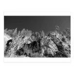 Barranco del Spearfish de la impresión de la bella Tarjetas Postales