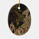 Barranco negro del Gunnison Ornatos