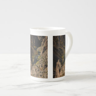 Barranco negro del Gunnison Tazas De Porcelana