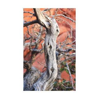 barranco rojo de la roca impresión en tela